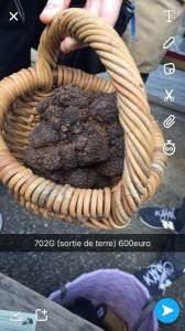 edm46-marche-truffes-lalbenque0008