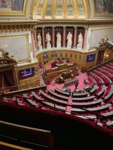 edm46-senatoriales-20190003